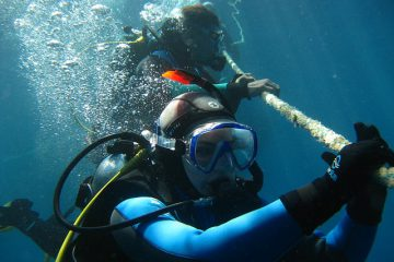 Buddy Diving Entrance