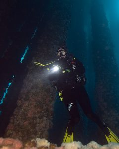 Diver With Dive Light
