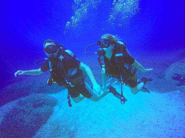 Dive Buddies Together