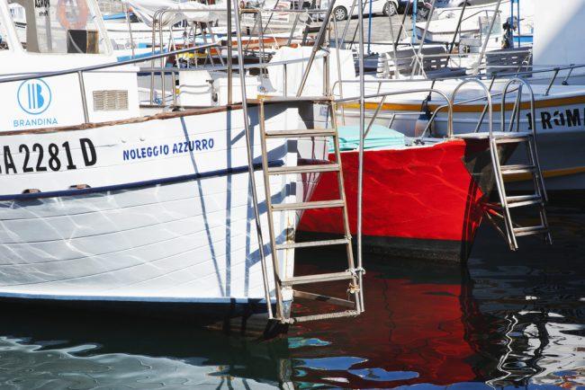 Boat Ladders
