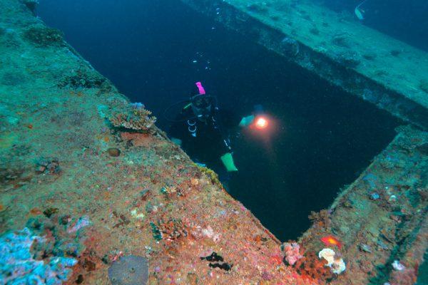 Diver In Maldives Wreck