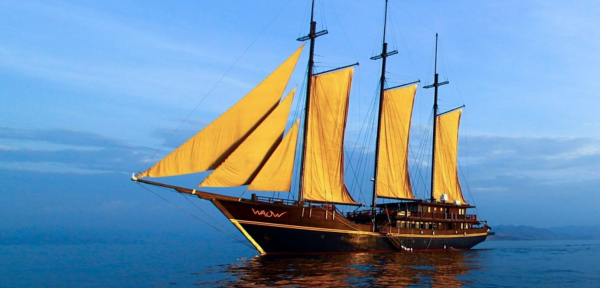 MSY Waow Liveaboard In Indonesia