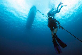 Dive Buddies Descending Down Rope