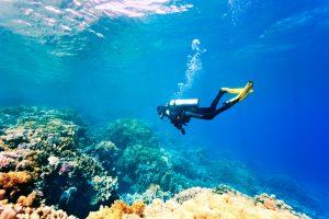 Diver Feeling Peace